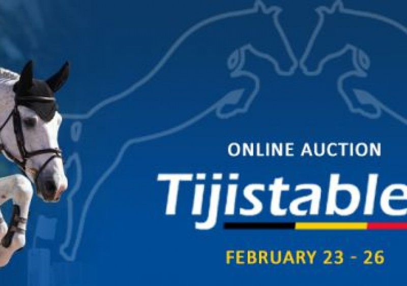 Online Auction voor Tiji Stables, powered by Zangersheide
