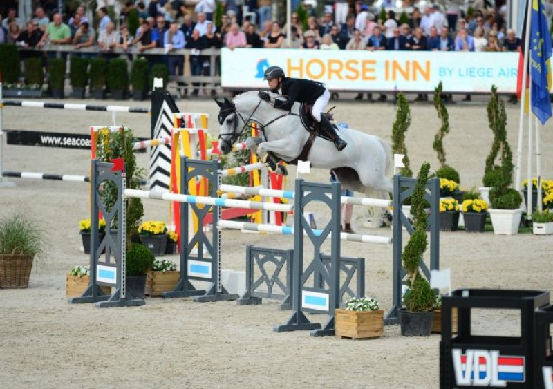 Jerome Guery eerste en derde in FEI Zangersheide Sires of the World!